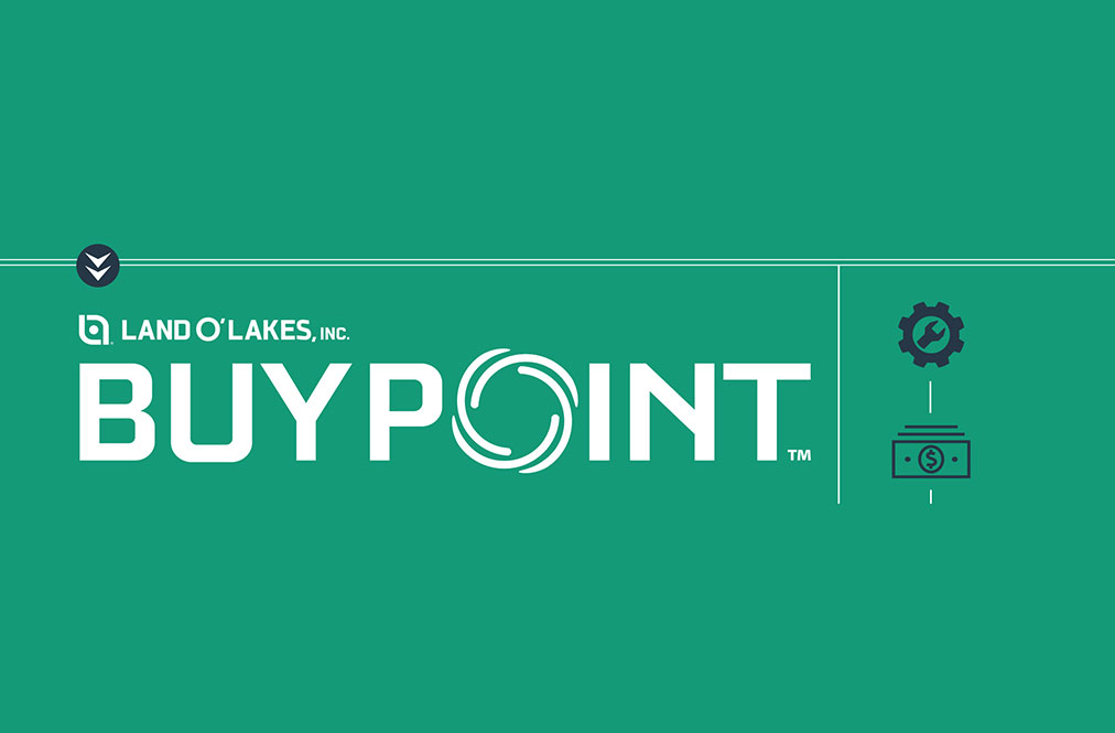 Buypoint Graphic Image