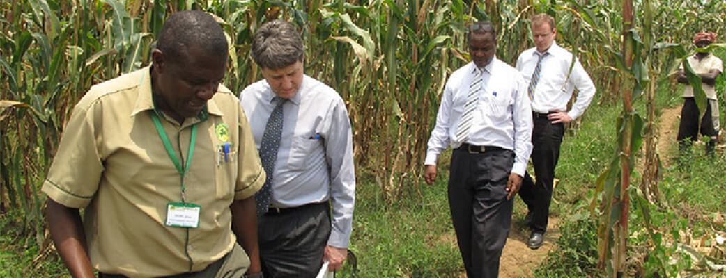 Kasaija Shows WinField And Land O'Lakes International Development Colleagues Around A Maize Field.