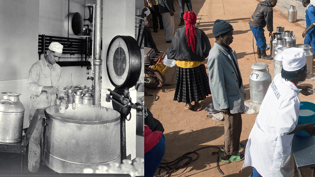 An Old Photo And A Recent Photo Of Milk Production