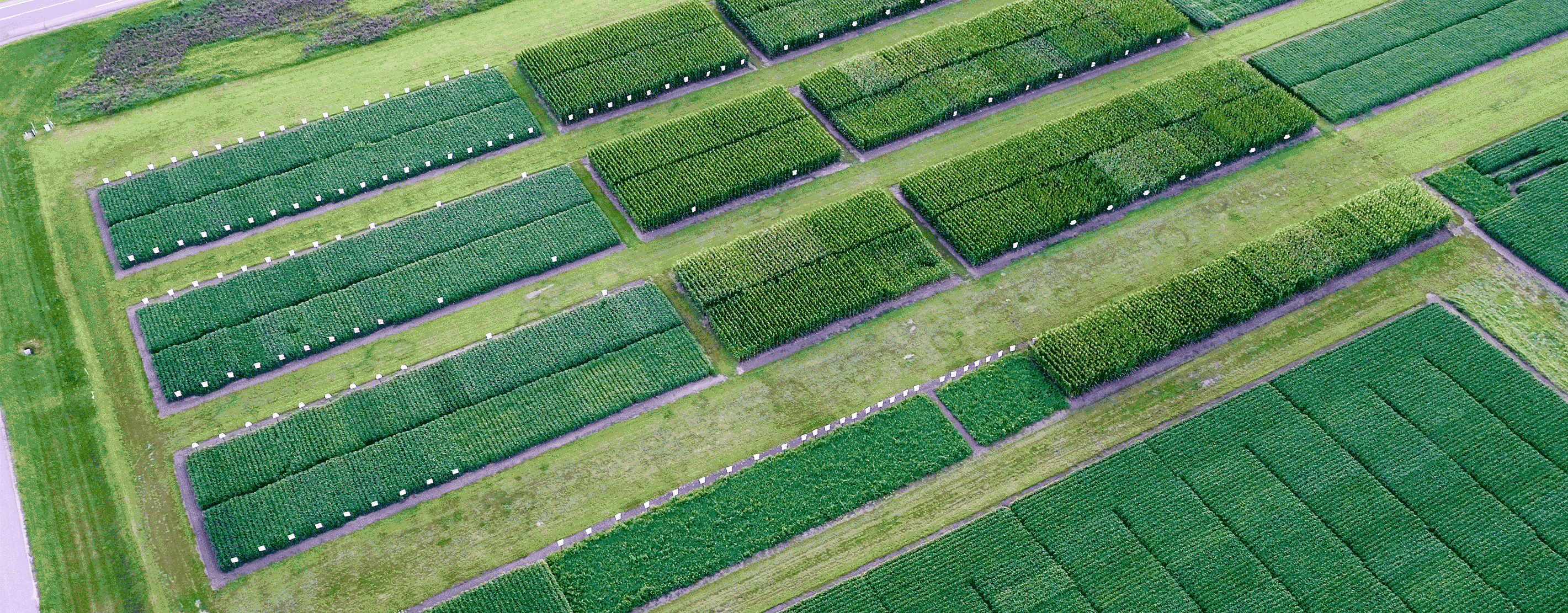 An Aerial View Of A WinField United Answer Plot