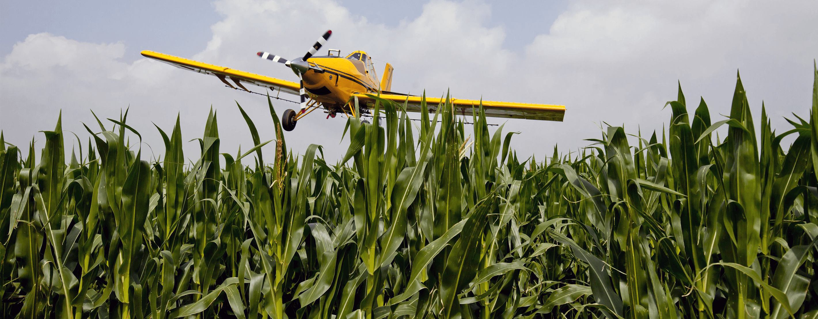 Crop Dusting Plane Flying Over Corn Field